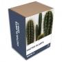 Vypěstuj si sám Kaktus
